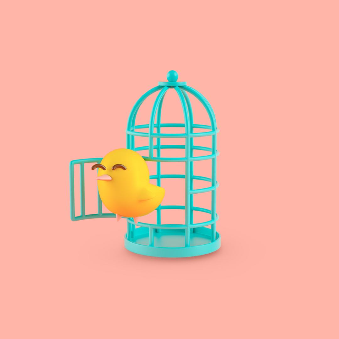 cuadrado jaula